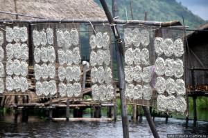 Лапша из рисовой муки сушится на солнце