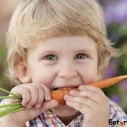 что делать если ребенок не ест мясо