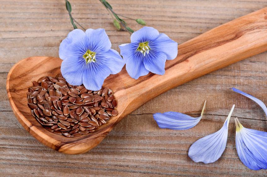 ложка льняного семени