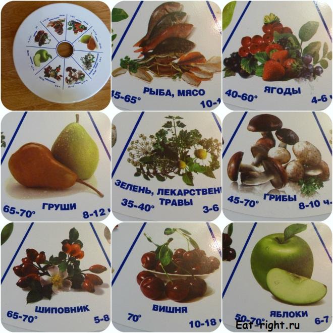 сушилка для фруктов и овощей ротор
