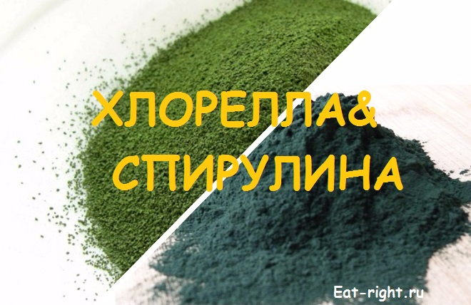 Спирулина и хлорелла