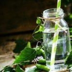 Натуральный березовый сок — средство от 350 болезней!