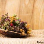 Правильный сбор лекарственных трав. Самый полный народный календарь сбора трав