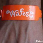 Фестиваль Wafest — такой, каким увидели его Мы
