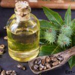 Касторовое масло для бровей. Эко-средство для роста и ухода
