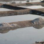 Как делают морскую соль — древнейший способ из Индии. Фото-обзор